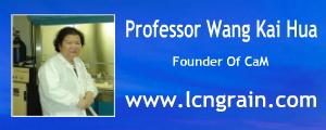 Professor Wang Kai Hua